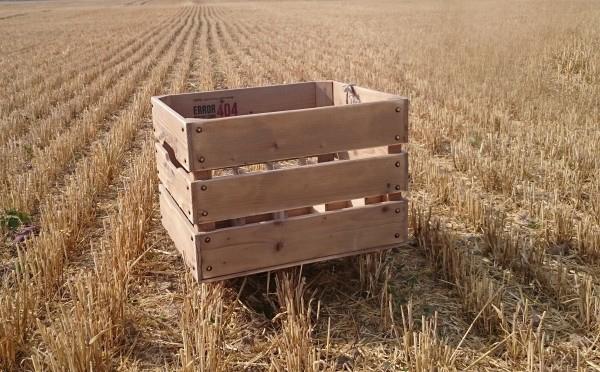 Medinė dėžė su spauda alui 20 butelių