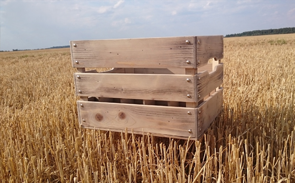 Wooden beer crate for 20 bottles